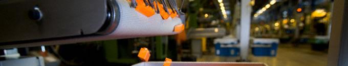 Todo sobre moldes de inyeccion de plastico en China