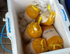 Concentrados de Naranja de Origen Venezolano